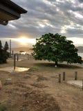 Puesta del sol de la bahía del verano - Palm Beach - casera y lejos foto de archivo