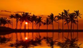Puesta del sol de la bahía de Anaehoomalu en la isla grande Hawaii Imagenes de archivo
