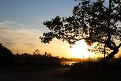 Puesta del sol de la charca del pato Fotos de archivo libres de regalías
