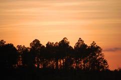 Puesta del sol de la Florida Imagenes de archivo