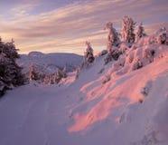 Puesta del sol de la montaña del invierno Imagenes de archivo