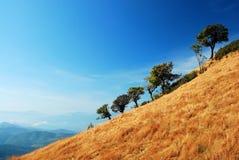 Puesta del sol de la montaña del panorama Fotografía de archivo libre de regalías