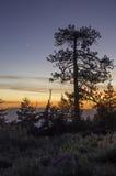 Puesta del sol de la montaña del pino Imagenes de archivo