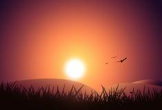 Puesta del sol de la naturaleza Foto de archivo