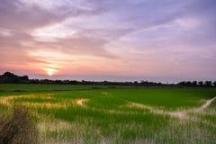 Puesta del sol de la naturaleza en Tailandia Fotos de archivo libres de regalías