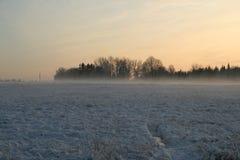Puesta del sol de la niebla del invierno Imagen de archivo
