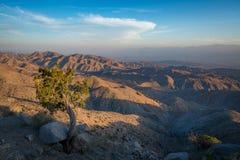 Puesta del sol de la opinión de las llaves en Joshua Tree National Park Fotografía de archivo libre de regalías