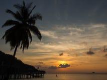 Puesta del sol de la palma, Isla de Navidad, Australia Imagenes de archivo