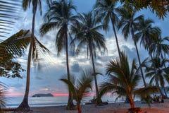 Puesta del sol de la palma por la playa en Costa Rica fotos de archivo