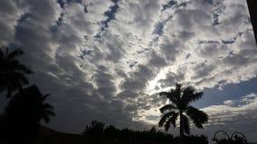 puesta del sol de la palmera de la mañana del cielo del día de la nube winteriscoming Imagen de archivo