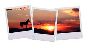 Puesta del sol de la película del cuadro Fotografía de archivo