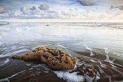 Puesta del sol de la playa Imagen de archivo libre de regalías