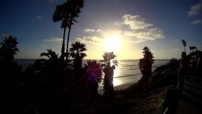 Puesta del sol de la playa de los SWAMIS con las palmas 1 California almacen de metraje de vídeo