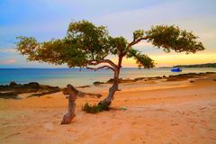 Puesta del sol de la playa de Nampula fotografía de archivo libre de regalías