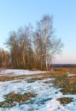 Puesta del sol de la primavera Fotografía de archivo libre de regalías