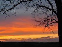 Puesta del sol de la primavera Fotos de archivo libres de regalías