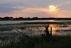 Puesta del sol de la región pantanosa Fotografía de archivo