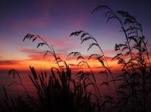 Puesta del sol de la silueta Imágenes de archivo libres de regalías