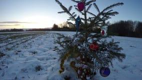 Puesta del sol de la tarde del Año Nuevo y abeto del árbol de navidad con las decoraciones en el campo, lapso de tiempo 4K metrajes