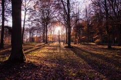 Puesta del sol de la tarde en Herefordshire Imagenes de archivo