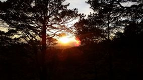 Puesta del sol de la tarde del otoño en la montaña de Bergen, Noruega Fotografía de archivo