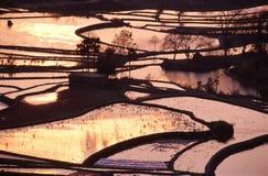 Puesta del sol de la terraza Foto de archivo