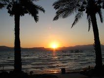Puesta del sol de las palmas Fotos de archivo libres de regalías