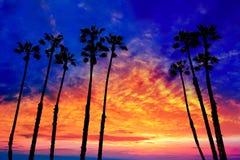 Puesta del sol de las palmeras de California con el cielo colorido Imagen de archivo libre de regalías
