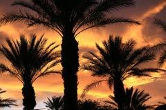 Puesta del sol de Las Vegas imagen de archivo libre de regalías