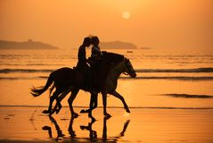 Puesta del sol de los caballos imagen de archivo