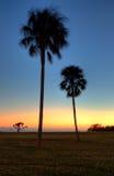 Puesta del sol de los marismas de la Florida Imagen de archivo libre de regalías