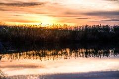 Puesta del sol de Luisiana Imagenes de archivo