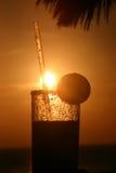 Puesta del sol de Margarita Fotografía de archivo libre de regalías