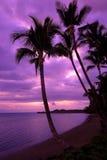 Puesta del sol de Maui Imagen de archivo libre de regalías
