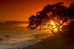 Puesta del sol de Maui fotografía de archivo libre de regalías
