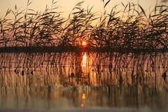 Puesta del sol de Midummer sobre el archipiélago en Padva, Raseborg foto de archivo