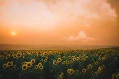 Puesta del sol de Moldavia Foto de archivo