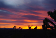 Puesta del sol de Nevada Imagen de archivo