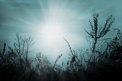 Puesta del sol de octubre en azul Imagen de archivo libre de regalías