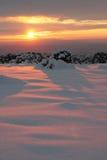 Puesta del sol de Pinon Imagen de archivo libre de regalías