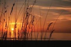 Puesta del sol de Sanibel Foto de archivo