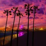 Puesta del sol de Santa Monica California en la rueda de Pier Ferrys Foto de archivo libre de regalías