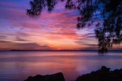 Puesta del sol de Sarasota Fotografía de archivo
