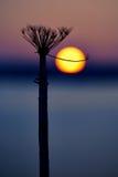 Puesta del sol de Shishiudo Fotografía de archivo libre de regalías