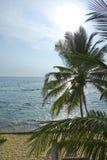 Puesta del sol de Sri Lanka en una playa Imagen de archivo libre de regalías