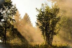 Puesta del sol de Transylvanian Imagenes de archivo
