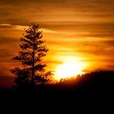 Puesta del sol de Yosemite imagenes de archivo