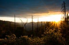 Puesta del sol de Yosemite fotografía de archivo libre de regalías