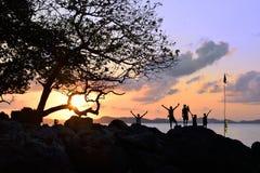 Puesta del sol del árbol de los viajeros Imagen de archivo