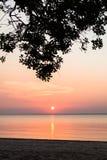 Puesta del sol del Amazonas imagen de archivo